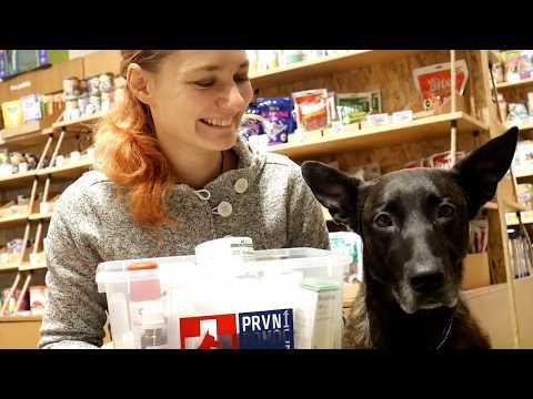 Tlapka TV - Co patří do psí lékárničky?