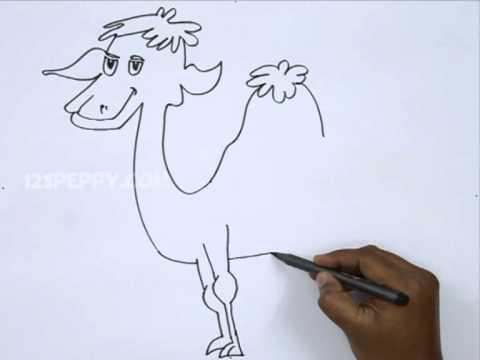 How to Draw a Dromedary Camel