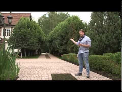 Илья васецкий ландшафтный дизайн видео