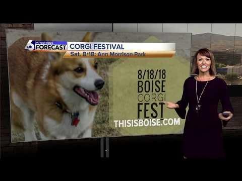 Baixar KIVI Boise - Download KIVI Boise | DL Músicas