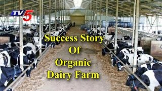 Organic Milk |  A Success Story Of Organic Dairy Farm | Annapurna | Telugu News | TV5 News