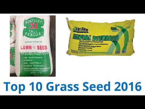 10 Best Grass Seed 2016