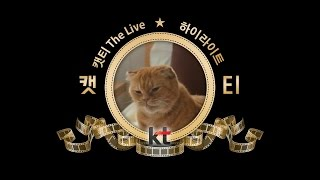 캣티 The LIVE 하이라이트ver.