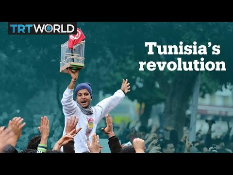 8 years after the Tunisian Revolution