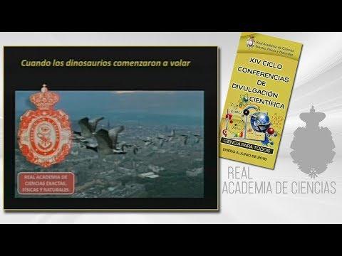 José Luis Sanz García, 7 de junio de 2018.20º conferencia delXIV CICLO DE CONFERENCIAS DE DIVULGACIÓN CIENTÍFICA.CIENCA PARA TODOS 2018http://www.rac.eshttps://twitter.com/racienciashttps://arac.rac.es/