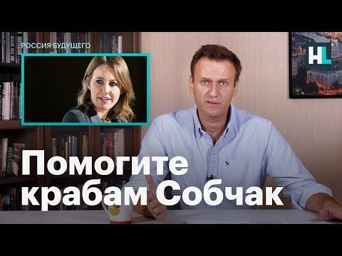 Навальный о крабовом бизнесе Ксении Собчак