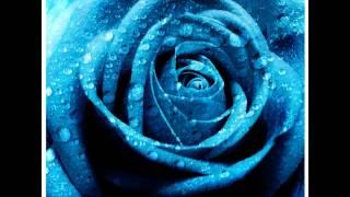 ANDREA SCHROEDER - Paint It Blue