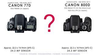 Canon 77D vs Canon 800D Detail Specs Comparison Review