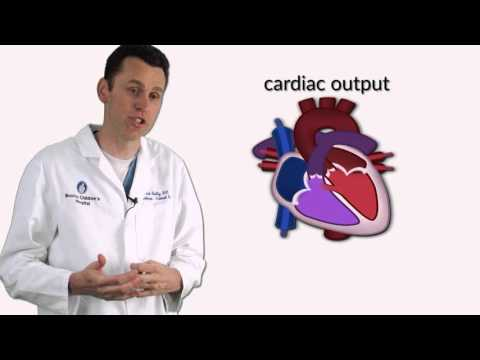 """""""Ventricular Septal Defects"""" By Dr. David Bailly For OPENPediatrics"""