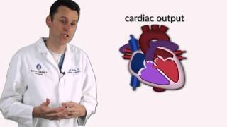 """Ventricular Septal Defects"" by Dr. David Bailly for OPENPediatrics"