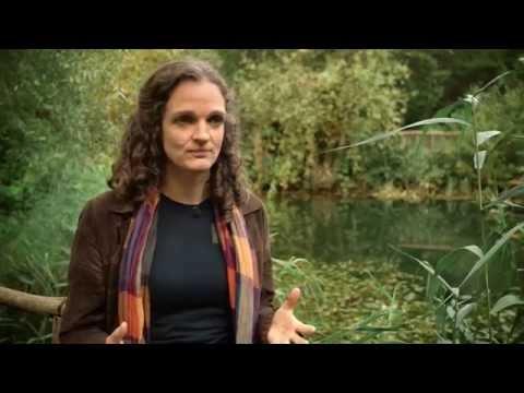 artgerecht YouTube Hörbuch Trailer auf Deutsch
