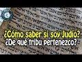 DONDE PODEMOS ENCONTRAR CUALIDADES ESTÉTICAS - YouTube