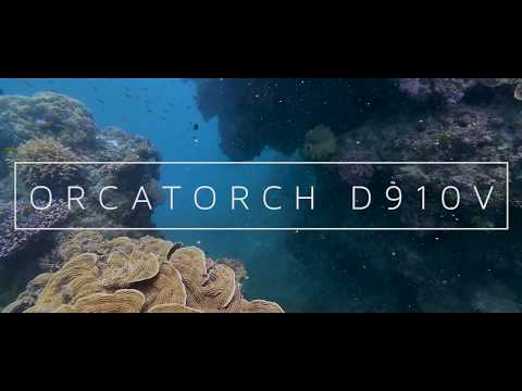 OrcaTorch D910V Video Light Great Barrier Reef