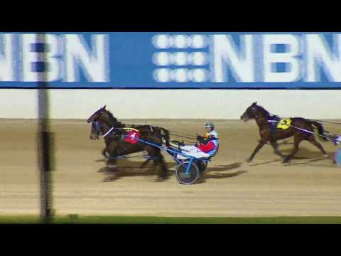 NEWCASTLE - 23/07/2016 - Race 5 - NBN TELEVISION PACE