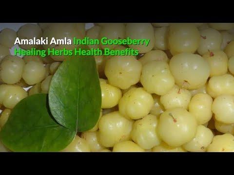 Indian Gooseberry Amalaki Amla Powder, Healing Herbs Health Benefits & Side Effects