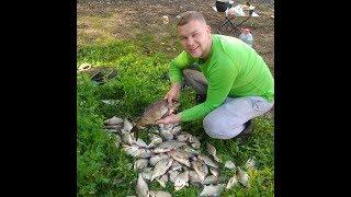 Наловили что еле унесли Рыбалка с ночевкой на Рузском водохранилище