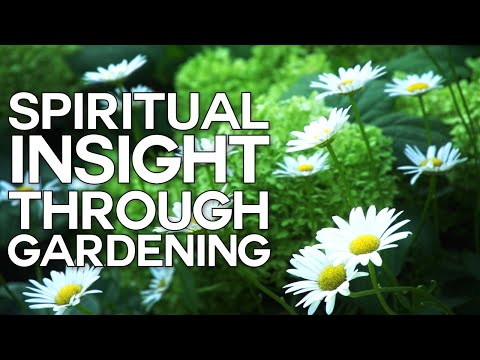 Spiritual Insight Through Gardening - Swedenborg and Life