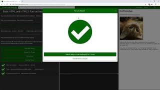 html, css & js 001 - Responsive Web Design - Basic HTML and HTML5