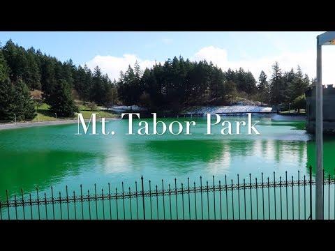 Winter on Mt  Tabor Park