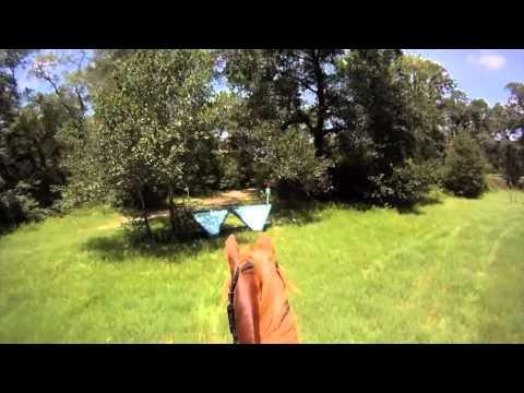 Arvo Schooling Pine Hill XC GoPro