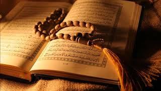 الآية وجعلنا من بين أيديهم سدا ومن خلفهم سدا مكررة ١٠٠٠ مرة الشيخ ميثم التمار Youtube