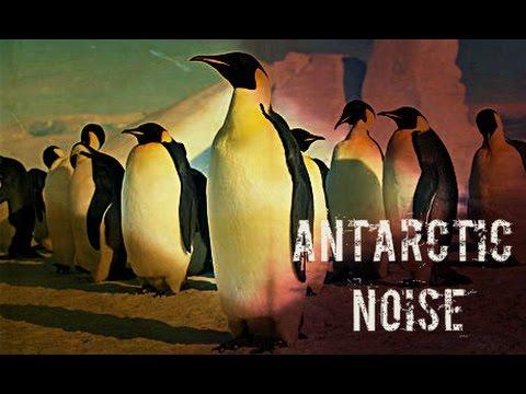 ANTARCTIC NOISE - royalty free music