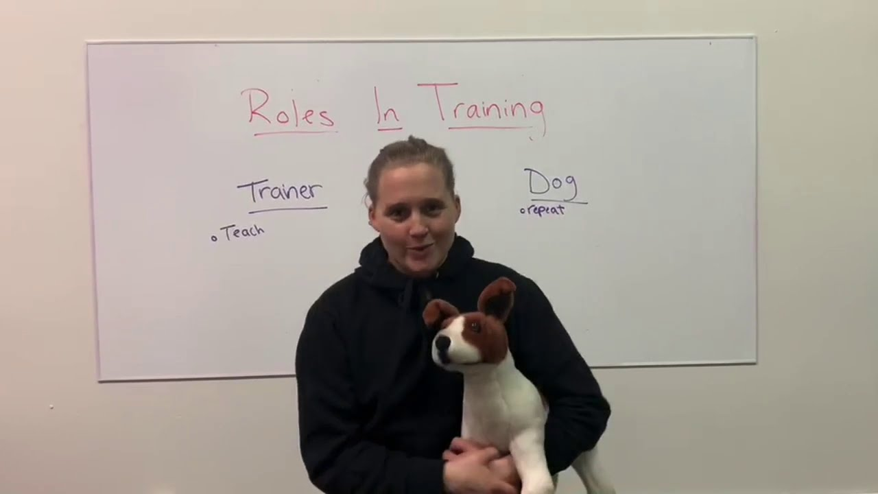 Roles In Dog Training