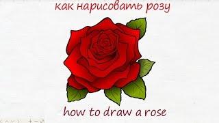 как нарисовать розу how to draw a rose #draw(как нарисовать розу how to draw a rose #draw Дети часто хотят нарисовать розу. Особенно на праздники. Они хотят нарис..., 2016-07-03T12:07:28.000Z)