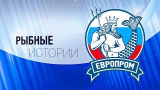 Смотреть видео Рыбные истории: ЕВРОПРОМ (Санкт-Петербург) онлайн
