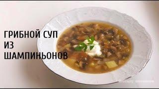 Рецепт приготовления грибного супа из шампиньонов. Как приготовить суп из шампиньонов?