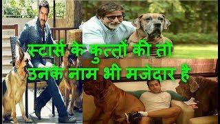 Bollywood stars Salman Khan, Amitabh Bachchan, Siddharth Malhotra and Ajay Devgan