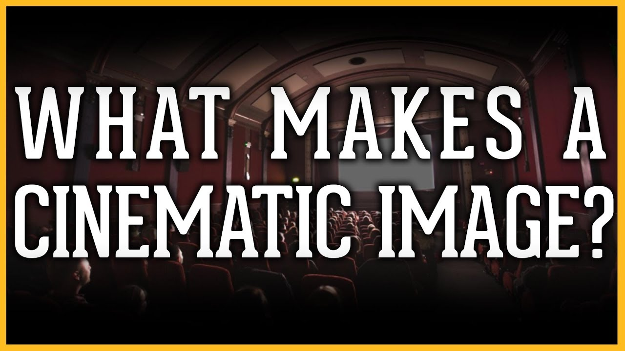 Watch: What Makes a 'Cinematic' Image? Cinematographers Try to Explain