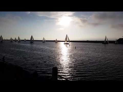 Boats coming back to the dock