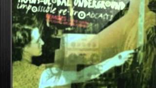 Transglobal Underground-The Sikhman and the Rasta (5th Suite rmx)