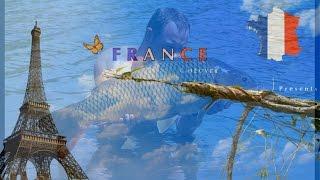 Vive La France-karpervissen frankrijk