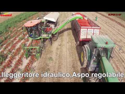 Nuova Raccoglitrice Di Pomodoro Guaresi Super G1200-40