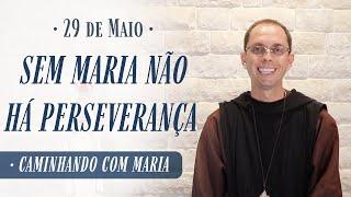 29 De Maio | Sem Maria Não Alcançamos A Perseverança - Caminhando Com Maria | Instituto Hesed