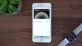 First Look: Apple Pay Cash