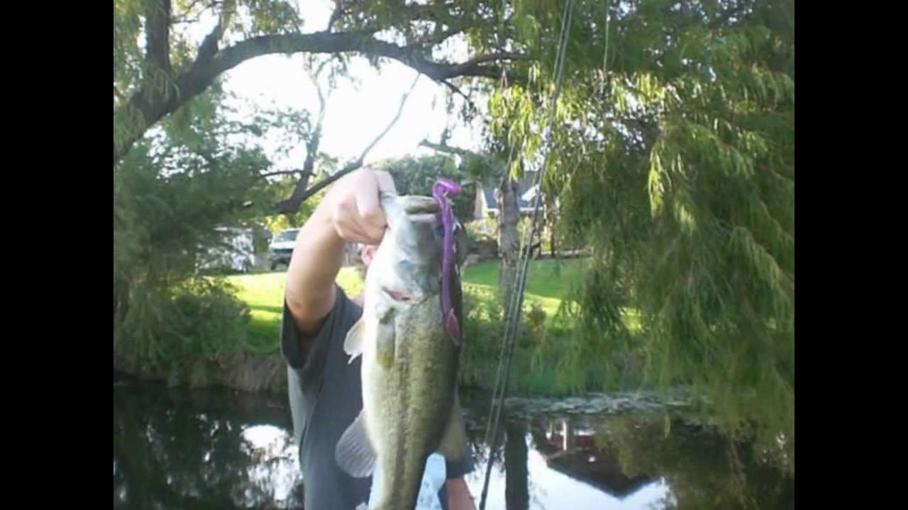 Jelly worm bass fishing youtube for Bass fishing worms