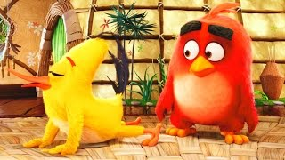 Angry Birds в кино - Русский тизер-трейлер (2016) HD