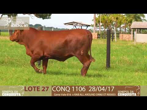 LOTE 27 CONQ 1106