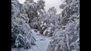 Pictures taken in Mariposa *Snow*