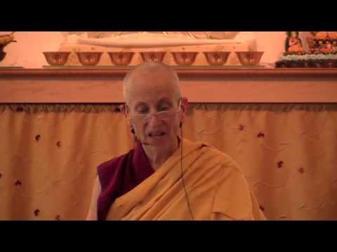 Meditative stability and wisdom