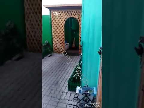 Нечеловеческие условия содержания Цапка-крабоеда из Кущевской: Преступление и наказание (часть-2)