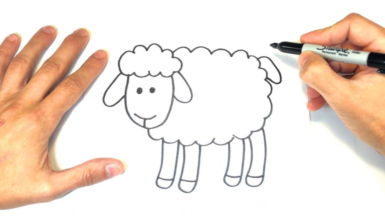 Cómo dibujar una Oveja Paso a Paso y fácil - YouTube