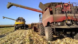 Corn Harvest 2017