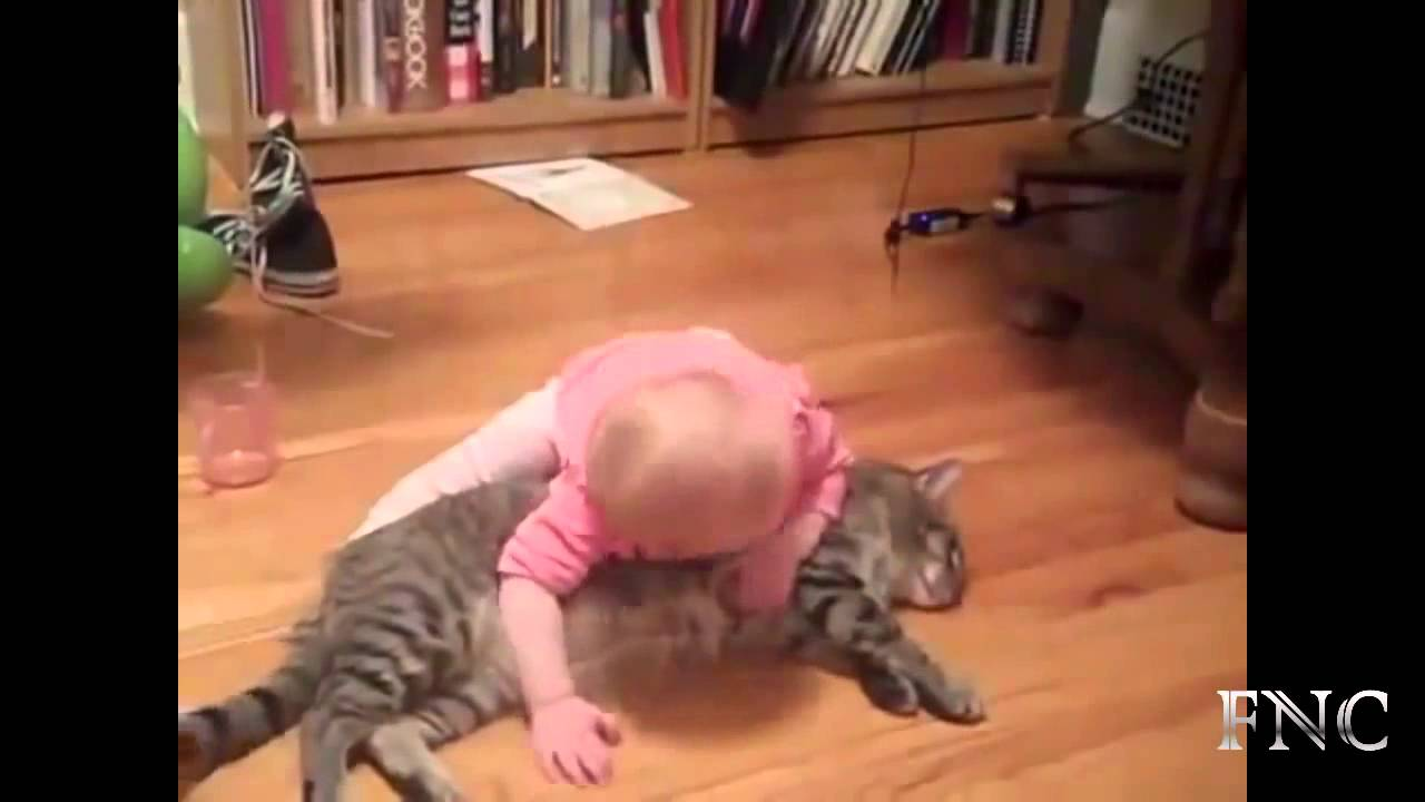 Cute Baby Love Quotes Cute Cat Love Baby Youtube