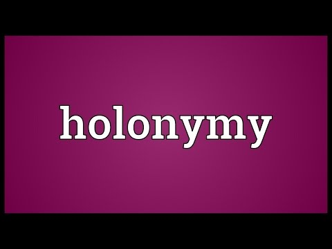 Holonymy Meaning