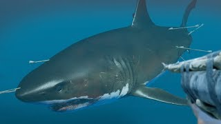 HUNTING THE MEGALODON!!! - Stranded Deep | Boss Hunt