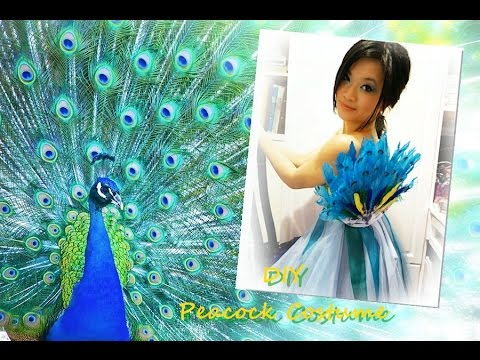 8afd75b3b DIY Peacock Costume - YouTube